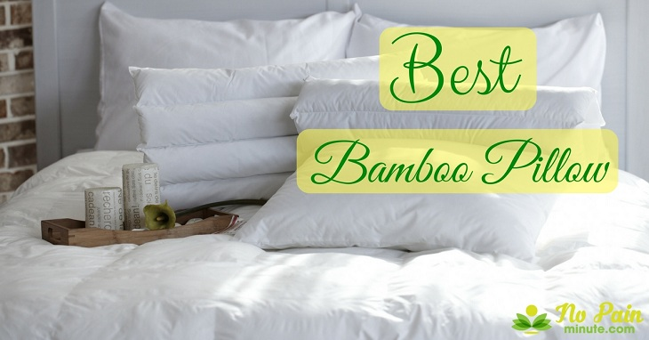 Best Bamboo Pillow 2019 Reviews Amp Buyer S Guide